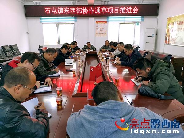 望谟县石屯镇东西部协作通草项目推进会召开