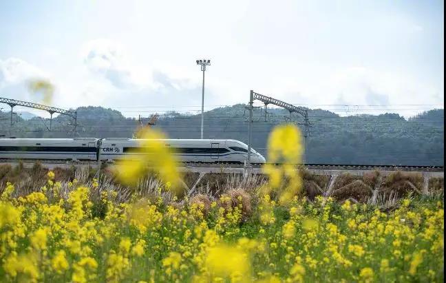 贵州多个站点可直接刷身份证进站乘动车