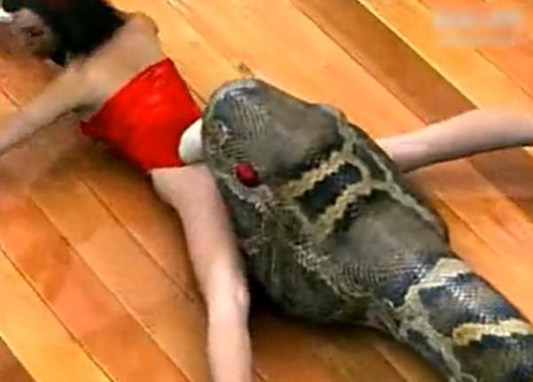 超恐怖的巨蟒把美女活生生的吃了全过程