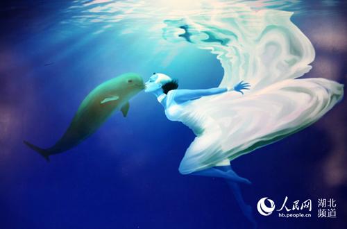 中国国内首个保护江豚主题艺术展在汉开展