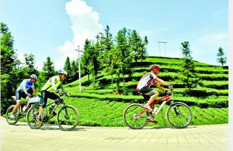 安有条中国最美山地自行车赛道