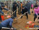 我州开展2018年义务植树活动 刘文新杨永英邓家富陈国芳与群众上山植树