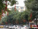 春节将至年味渐浓 兴义市区大红灯笼高高挂