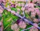 贵州醇景区发布收费公告:门票60元/张!公布5条优惠政策