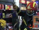 兴义一超市惊现眼镜蛇 消防员擒获放生(图)