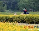 兴义万峰林:第200018名游客 享终身免费游万峰林