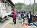 晴隆:三宝彝族乡192户864名群众喜迁新居